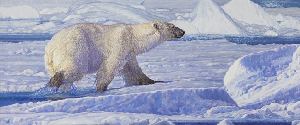 View Art of BAS Wildlife and nature paintings
