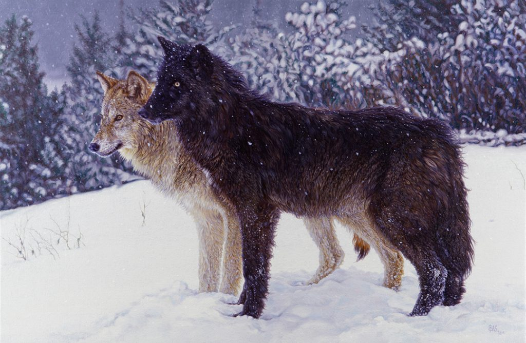 Wolf Painting - Ever Watchful