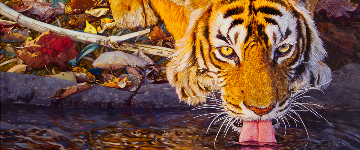 Tiger Painting - Art of Bas