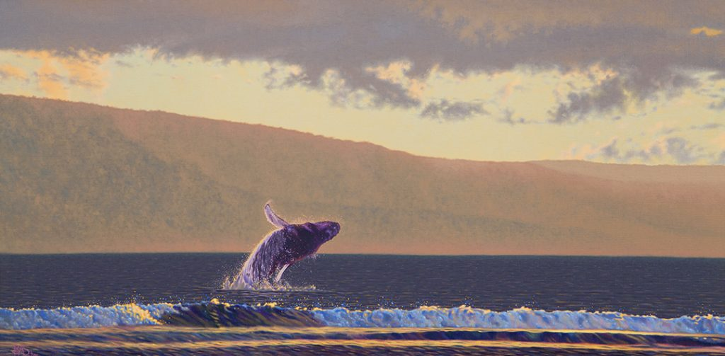 Humpback Whale Painting Lanai Backdrop